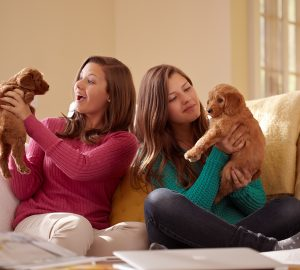 Mother and teenage daughter sitting on couch playing with puppies