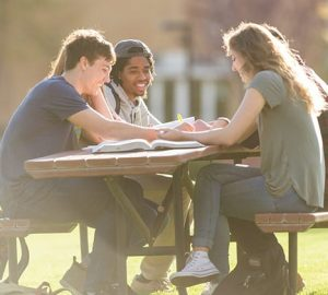 A group of students study outside.