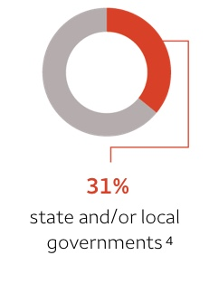 31% — state and/or local governments. Footnote 4